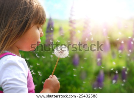 Fun on the meadow - stock photo