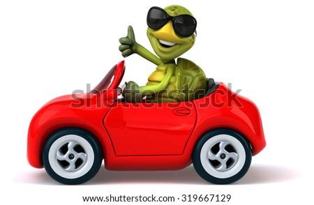 Turtle Driving Race Car