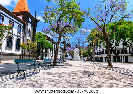Funchal cityscape with main street at sunny summer day. Travel concept  - stock photo