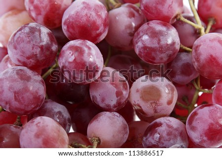 fund large and delicious purple grapes