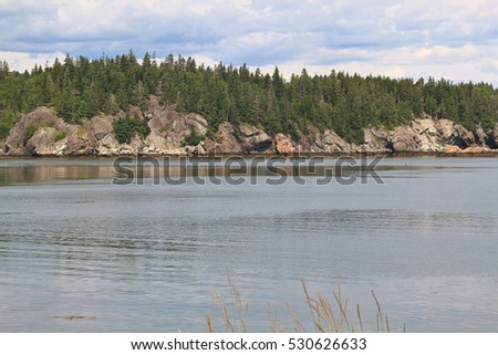 Fundy Bay Atlantic Ocean, New Brunswick multimillion years geological structures differ from clay form by volcanic ash to lava rocks like on picture of Campobello Island coastline with pine trees