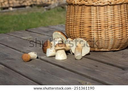 Fungus (Boletus edulis) on wooden table - stock photo