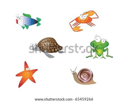 Funny animals - stock photo