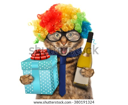 Funny cat in costume clown.  - stock photo