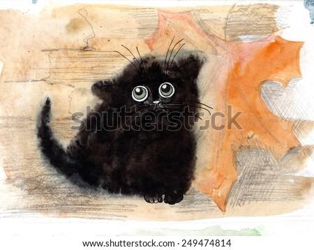 funny cat, Kitty - stock photo