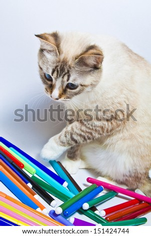 Funny cat playing with colored markers - stock photo