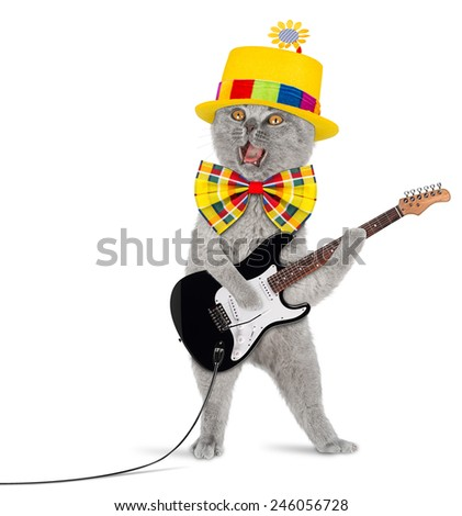 funny cat with electric guitar - stock photo