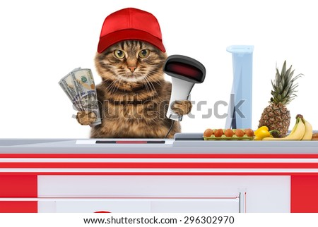 Funny cat working as a cashier in a supermarket. Keeps discount card. - stock photo