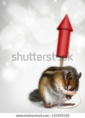 Funny chipmunk with fireworks, holiday background - stock photo