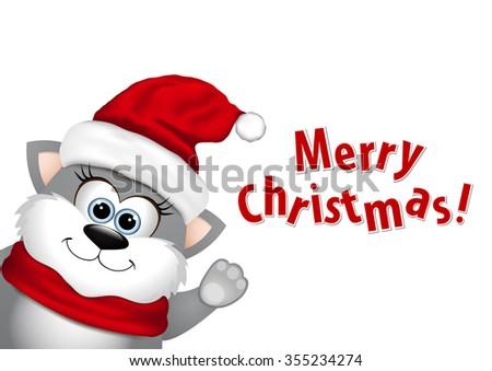 Funny Christmas cat on white background.  - stock photo