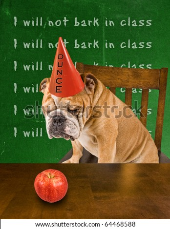 funny dog card - stock photo
