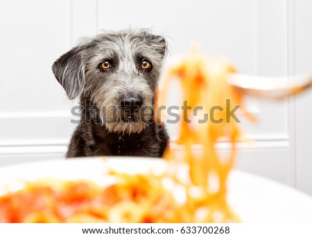 Drooling Stock Images,...