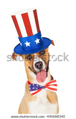 Funny dog wearing American flag hat and tie