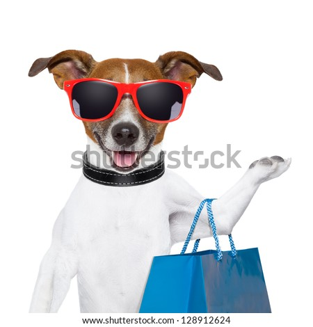 funny  dog with a big blue shopping bag and glasses - stock photo