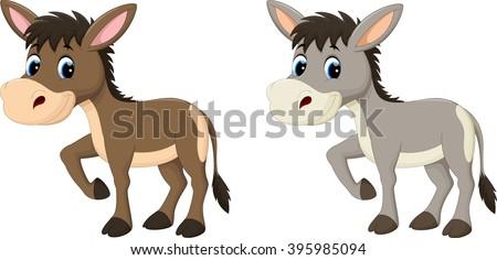 Funny donkey eating grass - stock photo
