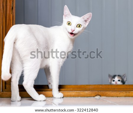 Evil Stock Photos Images Amp Pictures Shutterstock