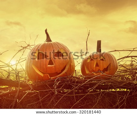 Funny face pumpkins sitting on grapevine and fence