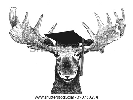 funny graduation image of moose with graduation cap and tassel, hand drawn illustration isolated on white background, senior student graduating cartoon or joke in humor comic style, moose with hat - stock photo