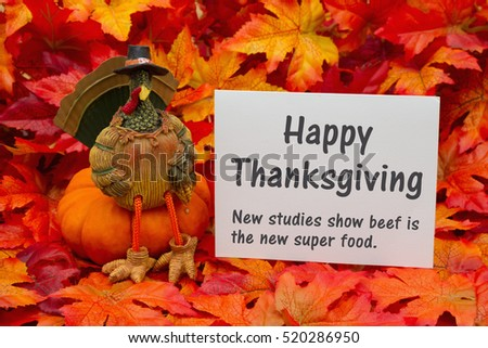 Funny Happy Thanksgiving  Greeting , Some fall leaves and a turkey sitting on a pumpkin and a greeting card with text Happy Thanksgiving and beef is a super food
