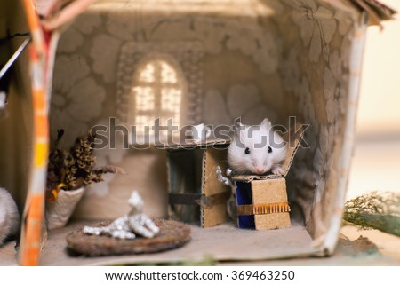 Funny little white hamster sitting on a chair in the kitchen. In a small imagine home. - stock photo