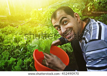 Funny man with a salad. - stock photo