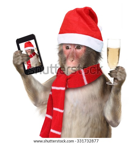 Funny monkey with christmas santa hat taking a selfie and smiling at camera