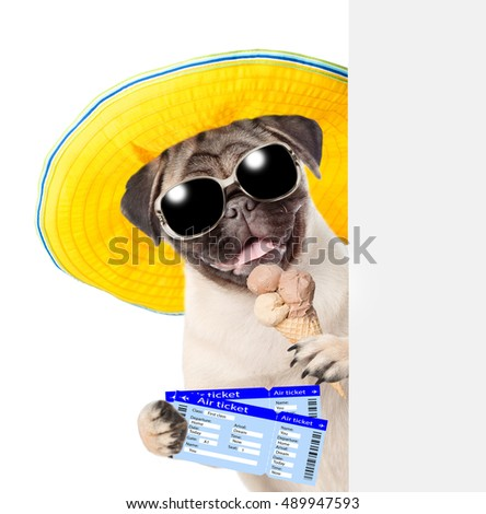 Funny puppy with sunglasses holding airline tickets and ice cream. isolated on white background