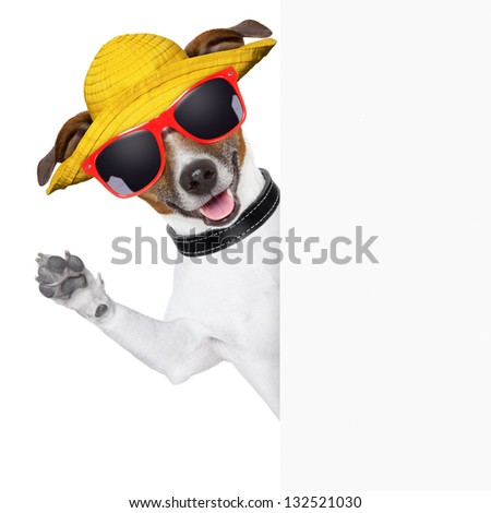 funny summer dog behind a blank banner - stock photo
