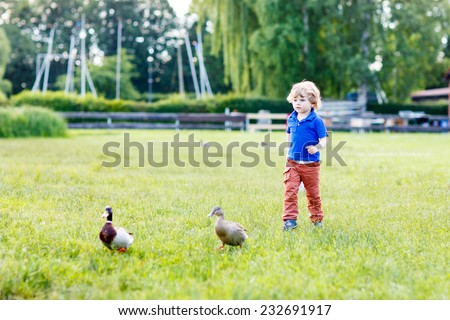 Funny toddler boy chasing wild ducks in a park on a beautiful sunny summer day