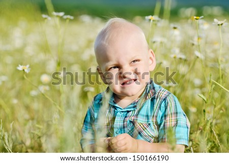 funny toddler boy sitting in the field of daisies