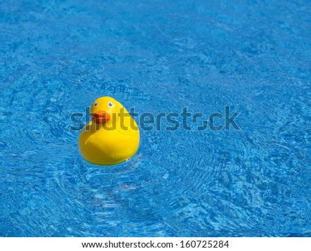 Funny yellow rubber duck floating in a swimming pool, shallow depth of field - stock photo