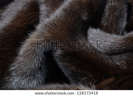 Mink Coat Stock Photos, Illustrations, and Vector Art