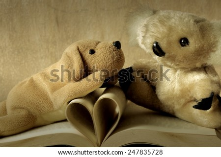 Fur bear and dog toy on books with love heart sign pages - stock photo