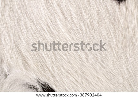 Fur cow leather texture background - stock photo