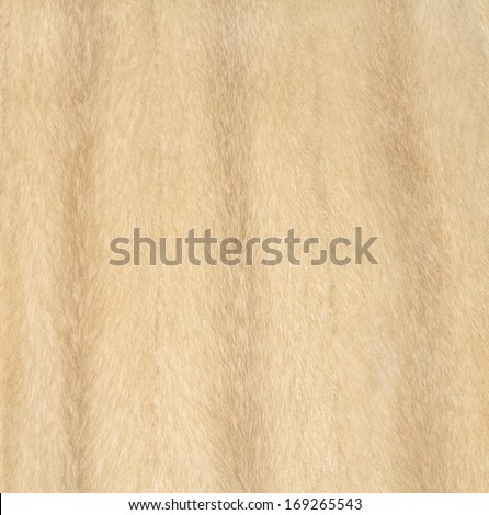 Fur texture closeup background