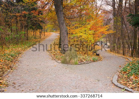 Furcation of the road in autumnal Sofiyivsky Park in Uman, Ukraine - stock photo