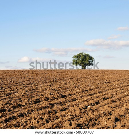 Furrowed Farmland - stock photo