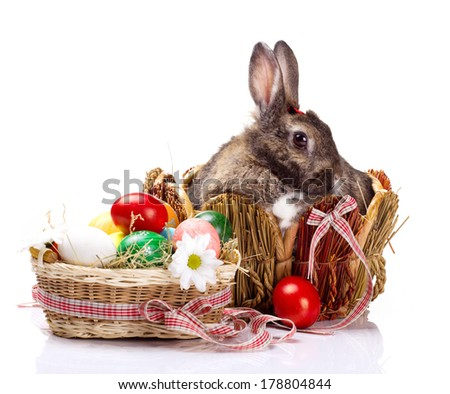 furry brown with white spot bunny in straw nest,  many easter colorful eggs and flower in basket   on white background - stock photo
