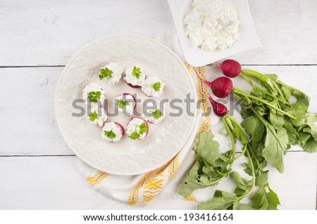 Futo Maki sushi wiht salmon and nigiri sushi with tuna - stock photo