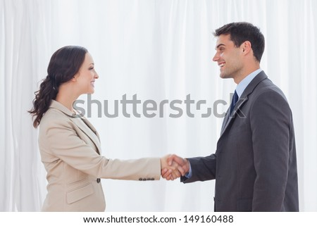 Future partners shaking hands in bright office - stock photo