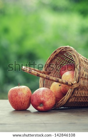 gala apples in a wicker basket, vintage edition - stock photo