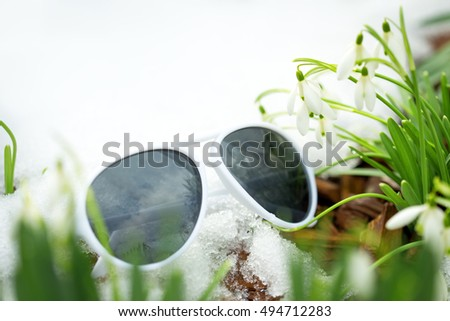 Galanthus nivalis between snow and white sunglasses, concept spring beginning