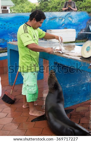 Galapagos, Ecuador - September 19, 2015: Galapagos Food and fish market in downtown of Isabela Island just in front of the port.