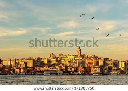 Galata Tower and Golden Horn with nice blue sky and seagulls flying - stock photo