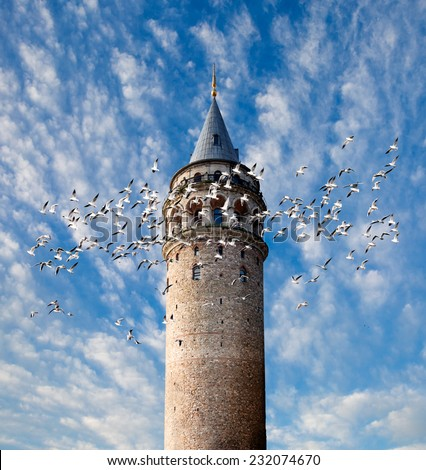 Galata tower and seagulls - stock photo