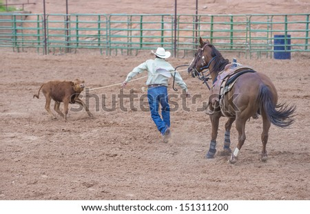 GALLUP , NEW MEXICO - AUGUST 10 : Cowboy Participates in in a Calf roping Competition at the 92nd annual Indian Rodeo in Gallup, NM on August 10 2013