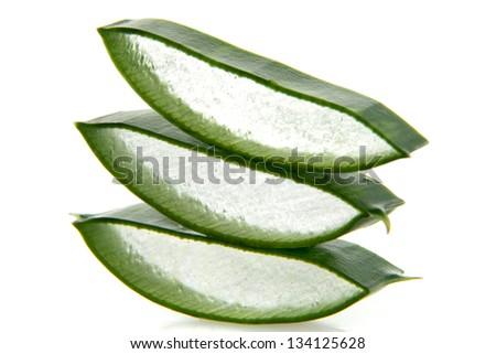 Gamma laminae leafs aloe vera on white background - stock photo