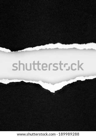 Gap in torn paper for advertising copy - stock photo