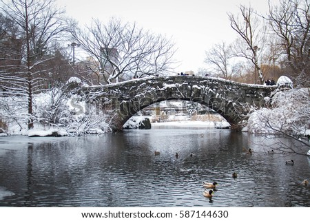 Gapstow bridge and duck in the icy lake at Central Park