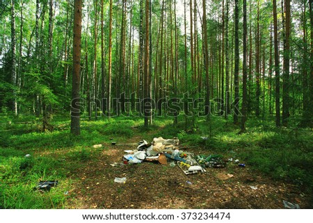 garbage dump in the woods - stock photo